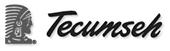 Beebe Tecumseh Logo